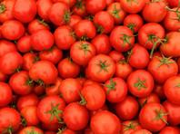 Россельхознадзор разрешил ввозить томаты еще с пяти турецких предприятий