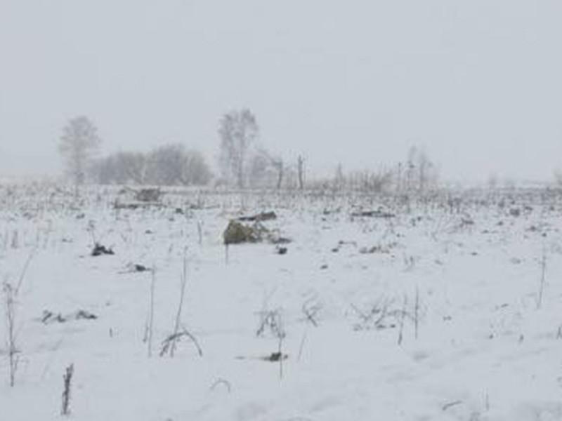 Пассажирский самолет Саратовских авиалиний потерпел крушение после вылета из Домодедово в Орск