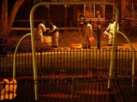 Российские эксперты раскритиковали версию о  перевозке яда, которым отравили Скрипаля, в чемодане
