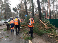 В Центральной России более 30 тысяч остаются без света после урагана