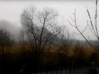 В Хабаровске разбился вертолет Ми-8: погибли шесть человек
