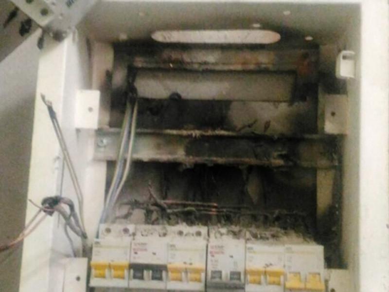 В Ленинском районе Новосибирска утром в среду, 4 апреля, произошло возгорание в электрощитовой детского сада. Из здания было эвакуировано 45 детей и девять сотрудников детсада