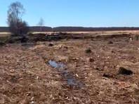 Дочь одной из пассажирок самолета Ан-148 спустя два месяца после крушения обнаружила останки тел на месте трагедии