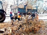 Ураган в Башкирии снес крыши десятка домов, оставленный костер обернулся пожаром