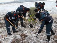 МЧС повторно  обследует место крушения Ан-148  после жалобы  родственников  погибших  на то, что в поле до сих пор лежат фрагменты тел