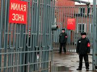 """За 7 лет в России в 4 раза выросло число осужденных по """"экстремистским"""" статьям"""