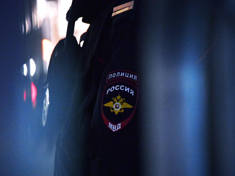 В Москве полиция задержала несколько десятков человек на акции солидарности с оппозицией Армении