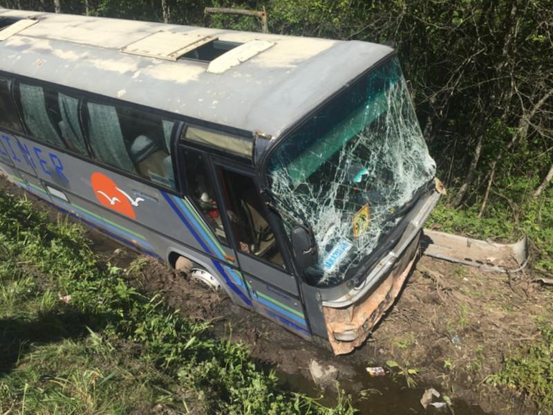 В Струго-Красненском районе Псковской области автобус с детьми съехал в кювет