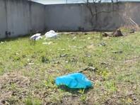 В приморском Артеме жители обнаружили стихийную свалку изувеченных трупов домашних животных