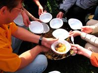 В России обложат сбором одноразовую посуду