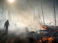 Жертвами лесного пожара в Бурятии стали двое сотрудников лесной охраны