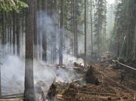 В Якутии площадь лесных пожаров превысила 11 тыс. га