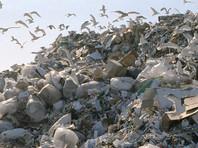 На каждого жителя России приходится свыше 200 тонн отходов, рассказали в Генпрокуратуре