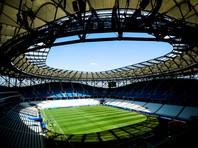 """Стадион """"Волгоград Арена"""" защитят от мошки с помощью ванильного концентрата"""