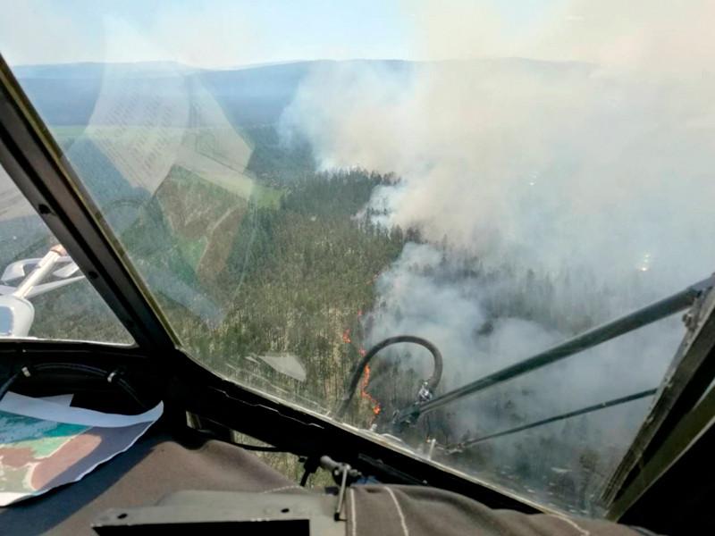 Площадь лесного пожара в Кольском районе Мурманской области на границе с Финляндией составляет 500 гектаров. Еще около 300 гектаров леса горит в Кандалакшском районе