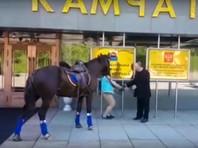 Камчатскому депутату отказали в парковочном месте для его мерина