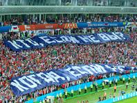 Болельщики РФ убрали за собой на трибунах в Сочи после матча с Хорватией (ФОТО)
