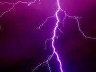 В Ростовской области после удара молнии в дерево погибла беременная женщина