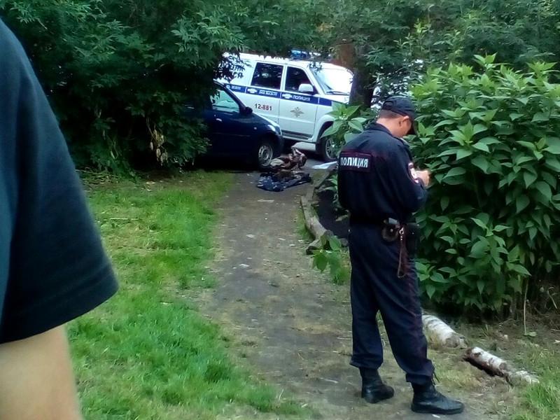 В Екатеринбурге пожилая женщина вечером 2 августа вынесла во двор своего дома мумифицированное тело мужа на глазах у соседей