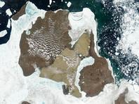 Остров Котельный в свое время был частью материка. Начал отделяться от суши примерно 10 тыс. лет назад. В этой области, по свидетельству сборщиков бивней, находят очень много бивней маленьких размеров. Протопопов подчеркнул, что именно внешние условия чаще всего формируют эволюционные направления