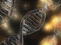 Роспотребнадзор предложил приравнять к персональным данным россиян их геном