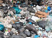 В Челябинске ввели режим повышенной опасности из-за скопившегося во дворах мусора (ФОТО)
