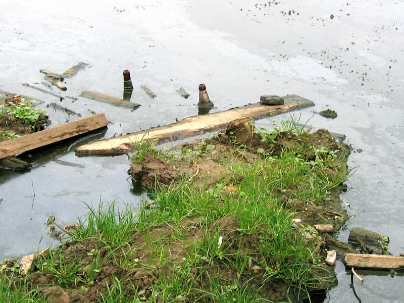 В Волгограде фекалии затопили подвалы домов и отравляют пруд с черепахами
