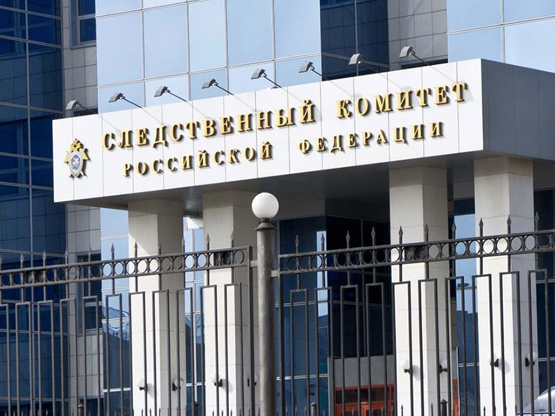 Следственный комитет подтвердил, что расследует уголовное дело в отношении Ксении Соколовой, экс-главы фонда доктора Лизы