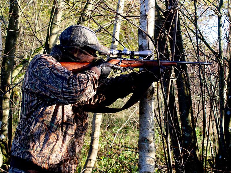 В России рассматривают возможность разрешения охоты на краснокнижных животных