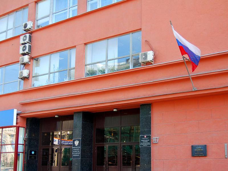 Россельхознадзор: доля фальсифицированных продуктов на рынке РФ достигает 20%