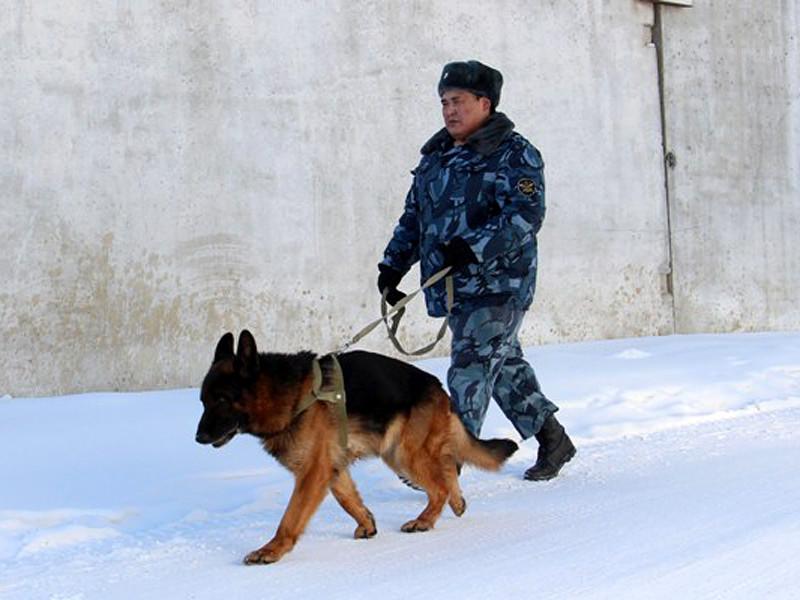 Заключенные колонии в Якутске объявили голодовку и зашили себе рты