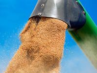 На юге России дальнобойщики бастуют из-за низких тарифов на перевозку зерна