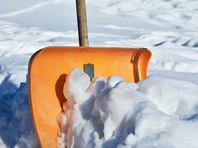 Саратовских учительниц заставили собирать снег в мешки на морозе (ФОТО)