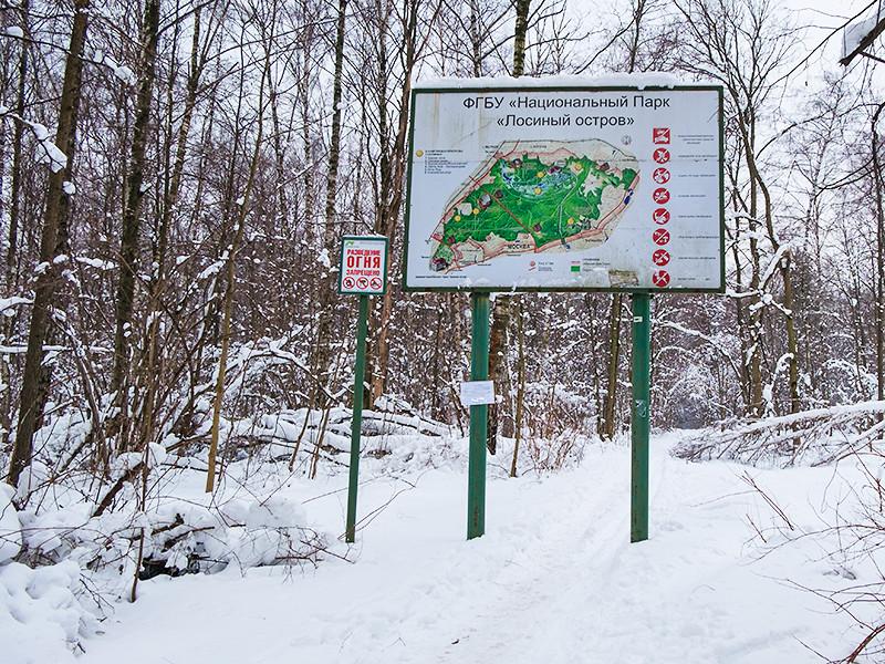 """В Москве шестилетний мальчик в одиночестве провел ночь в заповеднике """"Лосиный остров"""" и сумел самостоятельно выйти к людям"""