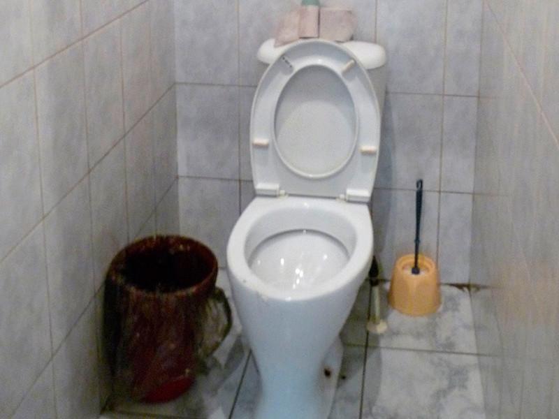 В Приморье возбудили дело о халатности работников школы, в которой родители окунули мальчика в унитаз