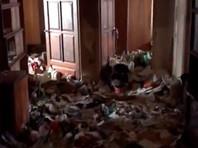 """На полицейских и соцработников завели дело после обнаружения в московской квартире истощенной девочки-""""маугли"""""""