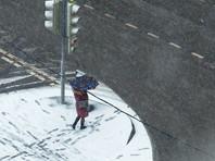 Под конец марта циклон принес в Москву сильный снегопад (ФОТО)