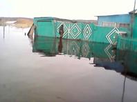 Старый Карапуз утоп в весеннем паводке в Новосибирской области (ФОТО)