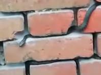 В Ростовской области змеи захватили станцию и не пускают в здание железнодорожников (ВИДЕО)