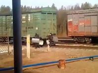 На станцию Шиес согнали Росгвардию и полицию с оружием, архангельские экоактивисты опасаются штурма (ВИДЕО)