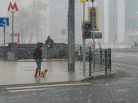 Снегопад, испортивший москвичам минувшее воскресенье, был, вероятно, не последним в нынешнем сезоне. Зима может еще не раз напомнить о себе вплоть до начала мая