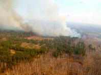 В Курганской области введен режим ЧС из-за природных пожаров