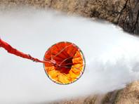 В Курганской области несколько дней бушуют природные пожары, в четырех районах и областном центре введен режим чрезвычайной ситуации. За прошедшие сутки в регионе зарегистрировано 162 возгорания, их тушат 455 человек, задействовано более 110 единиц техники