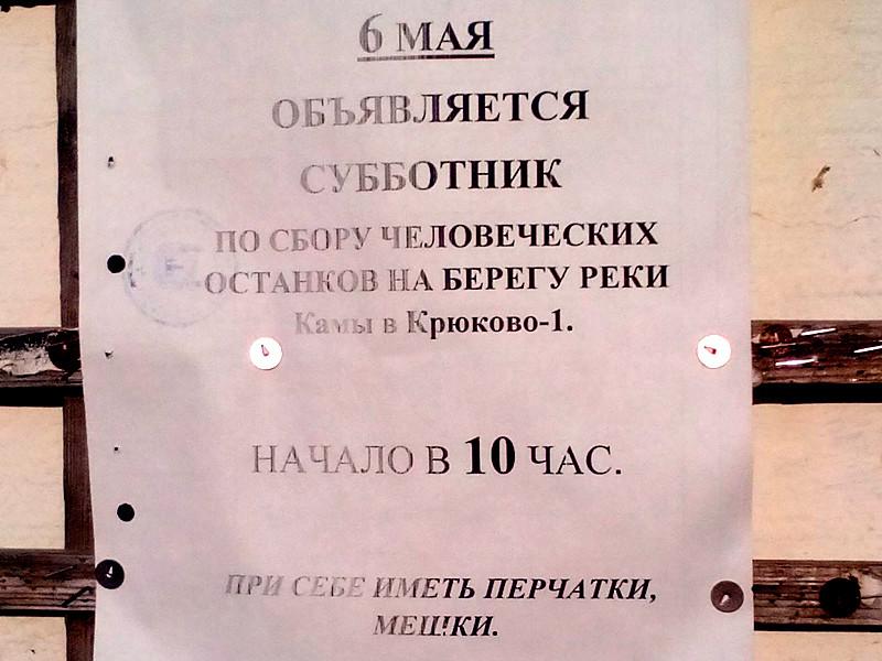 Объявление о необычном субботнике привлекло внимание пользователей Pikabu: жителей села Крюково-1 в Пермском крае позвали на сбор человеческих останков