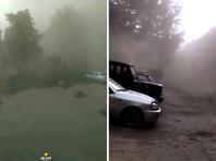 Мощные пыльные бури валили деревья и срывали крыши в Новосибирске и Новокузнецке (ФОТО, ВИДЕО)