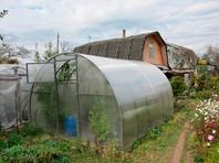 Бедные граждане, имеющие огород или свободную жилплощадь, могут прокормиться с их помощью и не нуждаются в государственных пособиях