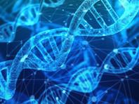 На пакетах с наркотиками из дела Голунова обнаружили ДНК нескольких человек, но не его отпечатки