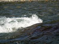 Из-за дождей уровень воды в реке поднялся, к тому же было сильное течение