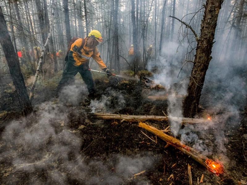 """В России продолжает расти площадь лесных пожаров. Накануне она превысила 2 миллиона гектаров. По данным """"Авиалесоохраны"""" на 25 июля, горит 2256983 га. И большая ее часть (2109815 га) находится в так называемой """"зоне контроля"""""""