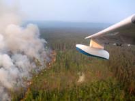 Путин распорядился подключить Минобороны РФ к тушению пожаров в Сибири, но время уже упущено